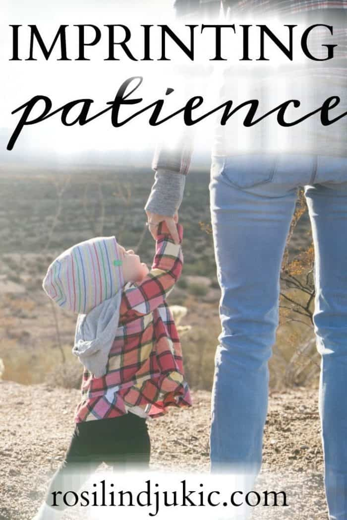 What is God using in your life today to remind you to imprint patience on the hearts of your children? Here is one mother's story.