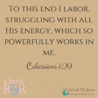 Colossians 1-29
