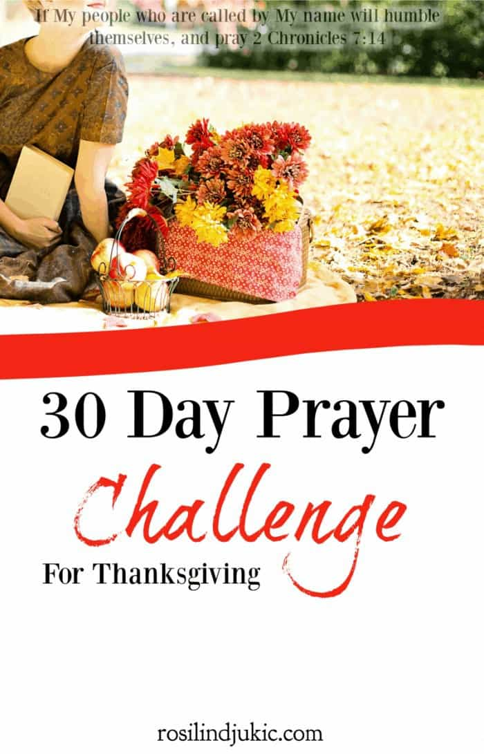 Join the 30 Day Prayer Challenge for Thanksgiving today! Click here to find out how you can download your copy today! A Little R & R | Rosilind Jukić | Christianity | Christian living | Christian blog | Christian faith | Bible Verse | Thanksgiving | #anxiety #prayer #warroom #warriorprincess #prayerjournaling #Scripture #Christian #Christianliving #spiritual #spiritualgrowth #Bible #God #jesus