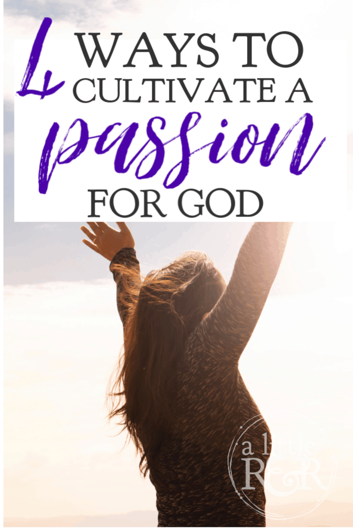 The Christian life is filled with mountain tops and valleys, but here are 4 ways we can cultivate a passion for God that sustains us during the valleys. #alittlerandr #Psalms #onlinewomensBiblestudy #onlinebiblestudy