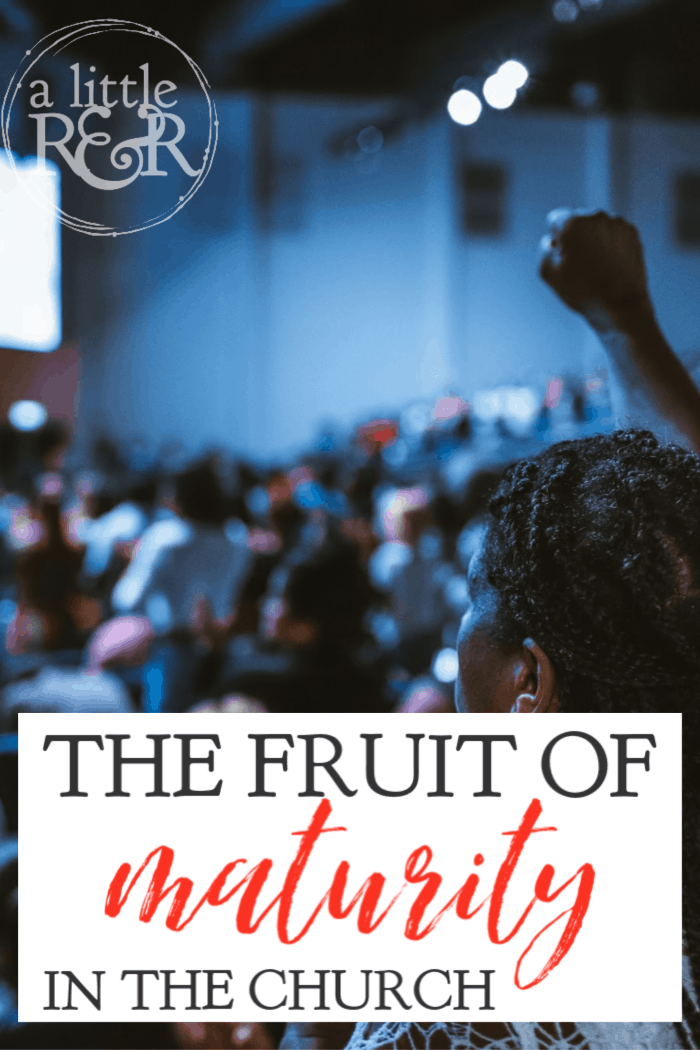 In a generation when leaders are falling and strong Christians are led astray by strange doctrine, we must recognize the fruit of maturity in the church. #alittlerandr #maturity #HolySpirit #submission #gospel via @alittlerandr