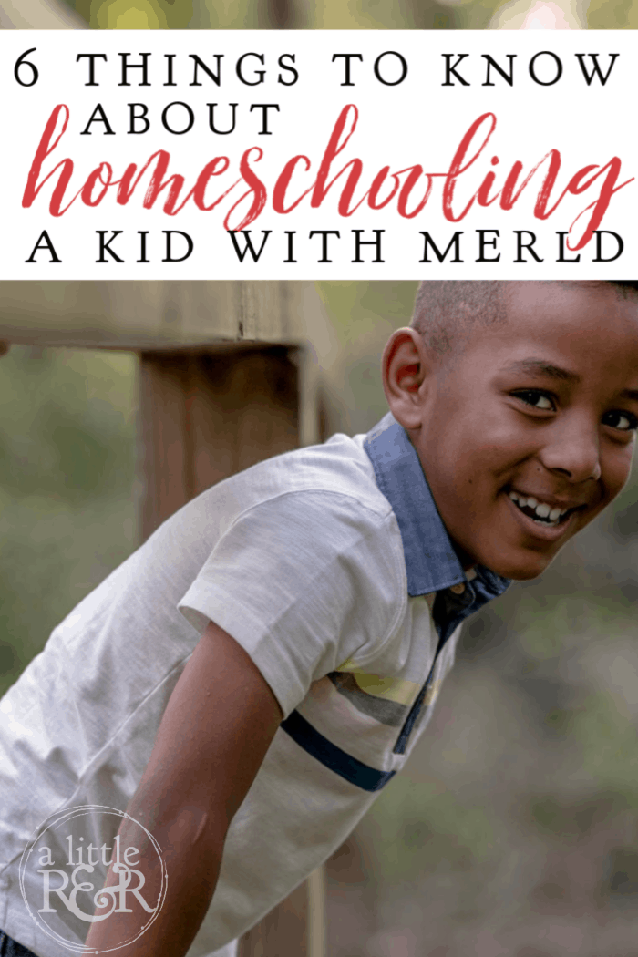 MERLD means Mixed Expressive-Receptive Lanugage Disorder. Here are 6 things parents need to know about homeschooling a kid with MERLD.  #alittlerandr #MERLD #langaugedisorder #homeschool #specialneedshomeschooling via @alittlerandr