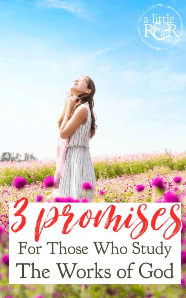 Those who study the works of God are truly the happiest people on earth. The Bible gives three outstanding promises to these people. #alittlerandr #promises #Bible #psalms