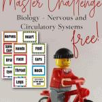 Lego figure riding bike